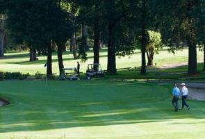 GolfingUlladulla